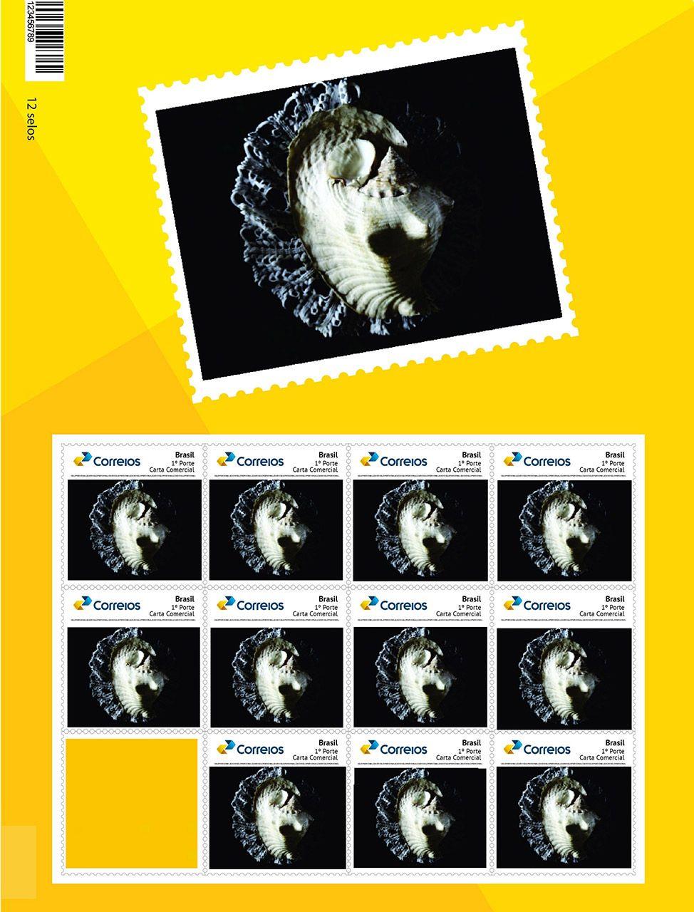 Projeto para selo postal, na imagem do selo vemos uma concha do mar posta sobre um fundo preto, a concha é uma referência ao mar que no passado existiu na região do xingu.
