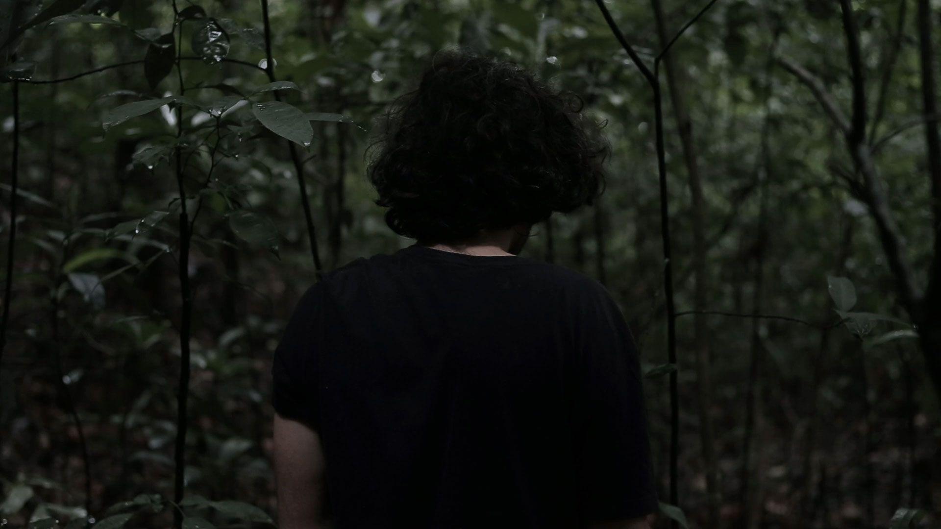 Vemos de dentro de uma floresta a partes da cidade do lado de fora; um homem de cabelos volumosos aparece dentro da floresta de costas vestido roupas pretas; sua imagem se dissolve e desaparece, vemos suas mãos cavando um buraco no chão, ao fim aparece um cutia (animal) e o vídeo acaba.
